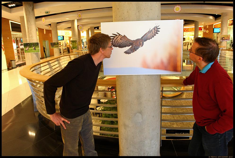 imelised linnud, fotonäitus, tasku keskus, Eesti ornitoloogiaühingu 90. juubel, riho kinks, andres kalamees