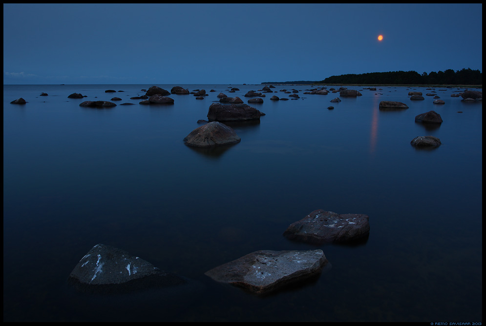 Kuuvalgel, Moonlight Remo Savisaar Eesti loodus Hiiumaa põhjarannik, Hiiumaa island, Estonia. Estonian Estonia Baltic nature wildlife photography photo blog loodusfotod loodusfoto looduspilt looduspildid