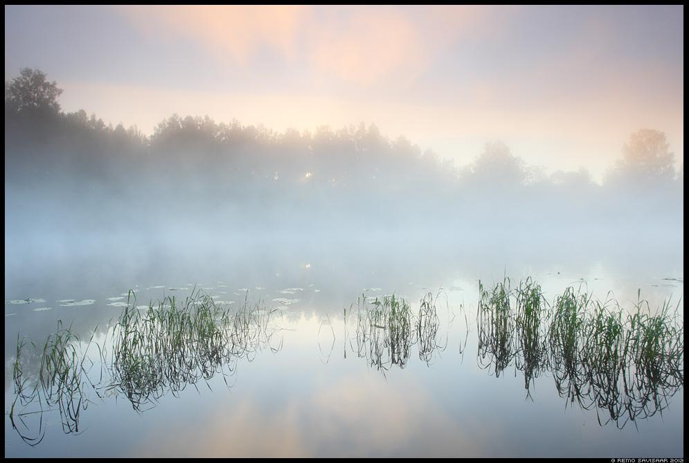 Hommik jõe ääres, Morning at the river, jõgi, river, emajõgi, Eesti, nature, loodus, udu, udune, fog, foggy