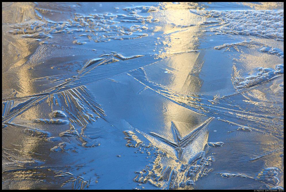 Jäämustrid, Ice patterns Remo Savisaar Eesti loodus Estonian Estonia Baltic nature wildlife photography photo blog loodusfotod loodusfoto looduspilt looduspildid