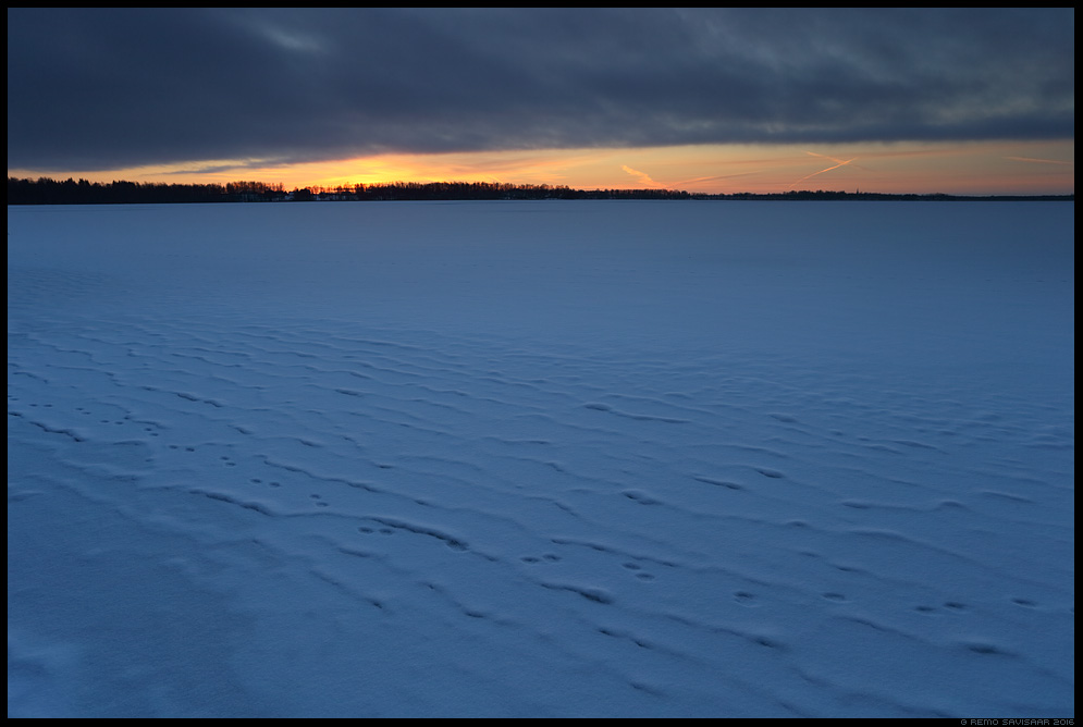 Jäätunud lained, Frozen waves snow vooremaa Remo Savisaar Eesti loodus  Estonian Estonia Baltic nature wildlife photography photo blog loodusfotod loodusfoto looduspilt looduspildid