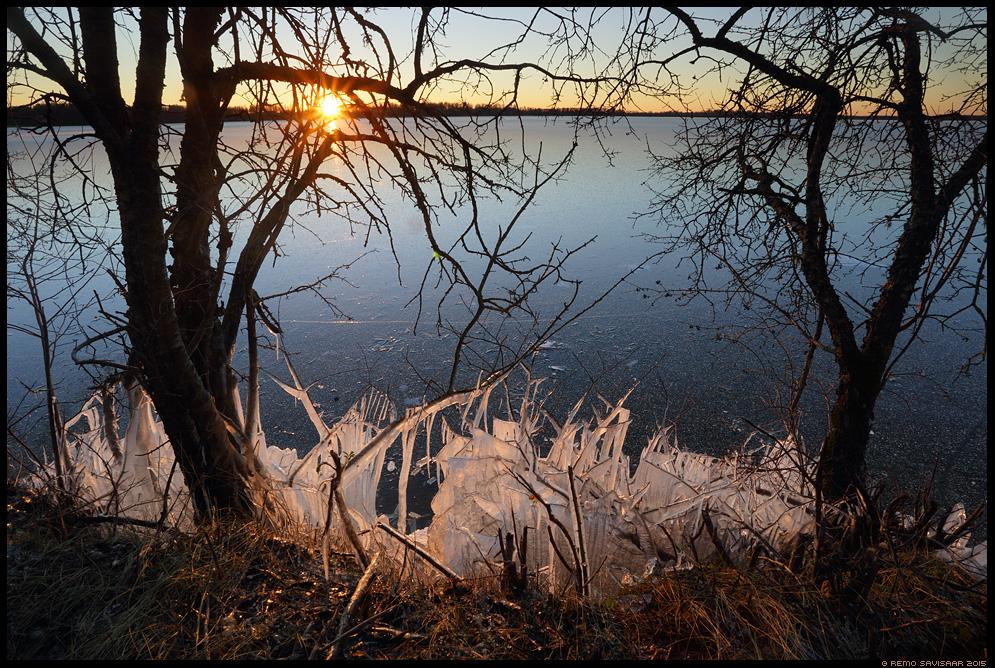 Jäämaailm, Ice World saadjärv Remo Savisaar Eesti loodus  Estonian Estonia Baltic nature wildlife photography photo blog loodusfotod loodusfoto looduspilt looduspildid