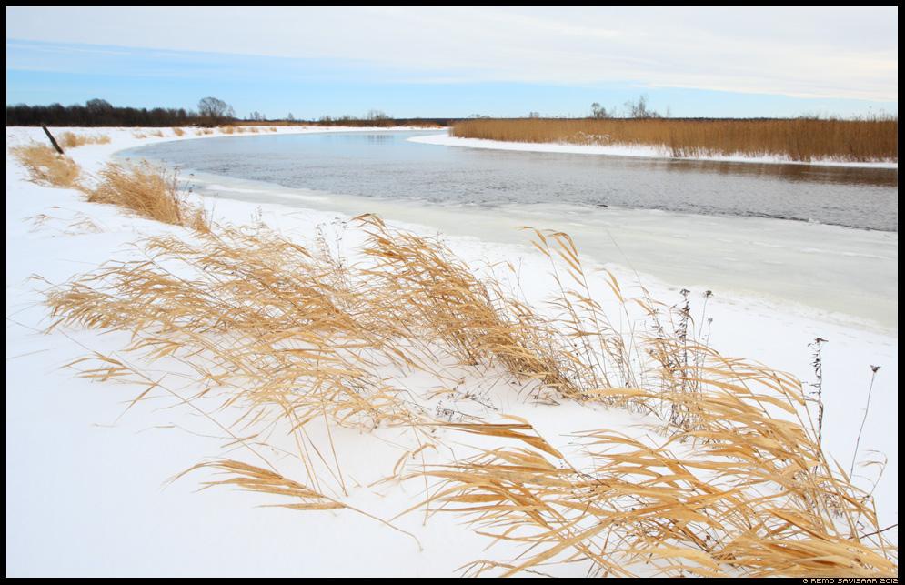 Veed on valla, Finally freed water, vesi, water, jõgi, river, luht, luhal, talv, winter