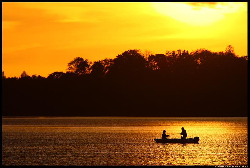 Kalapüük, Fishing