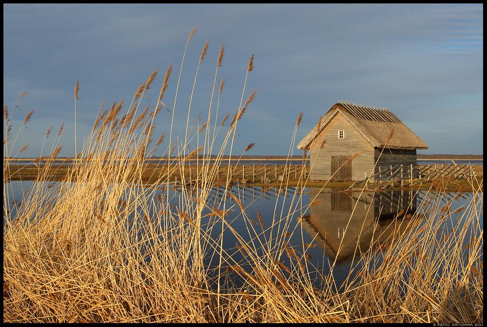 Kalurionn, Fisherman's hut, house, suitsu jõgi, suitsu river, matsalu rahvuspark, matsalu nature park