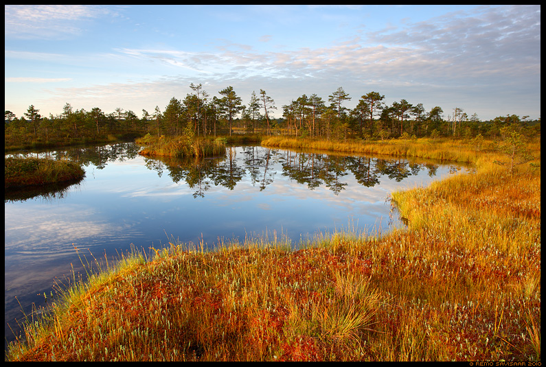 Värvid rabas, Colours in the bog