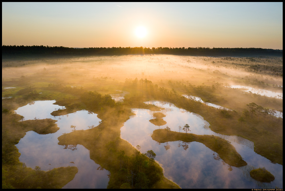 Kuldne udutekk, Golden blanket of fog bog pools endla männikjärve Remo Savisaar Eesti loodus  Estonian Estonia Baltic nature wildlife photography photo blog loodusfotod loodusfoto looduspilt looduspildid
