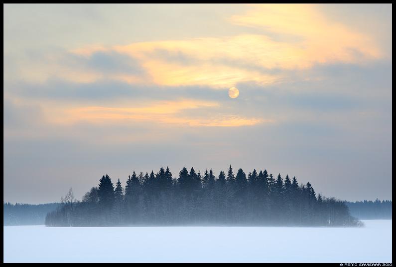 detsember, lumi, snow, winter, talv, Väike metsatukk, Island of trees
