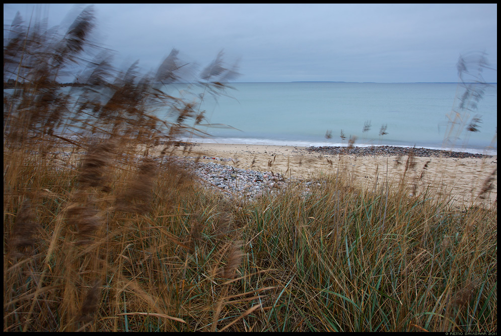 November, meri, sea, baltimeri, baltic sea, hall, pilliroog, rand, beach