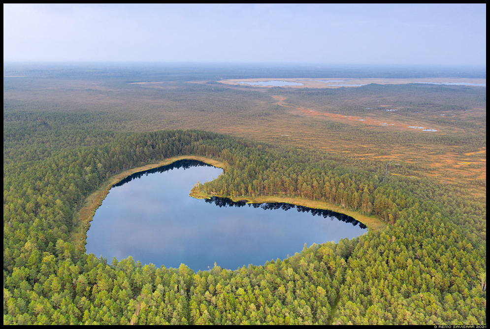 Parika väikejärv raba Remo Savisaar Eesti loodus  Estonian Estonia Baltic nature wildlife photography photo blog loodusfotod loodusfoto looduspilt looduspildid
