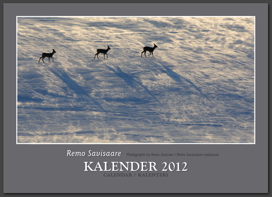 Remo Savisaar kalender 2012