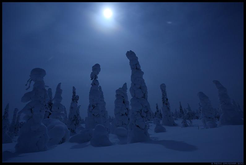 Täiskuuöö, Full moon, öö, hämar, Riisitunturi National Park, lapimaa, lapland, soome, finland