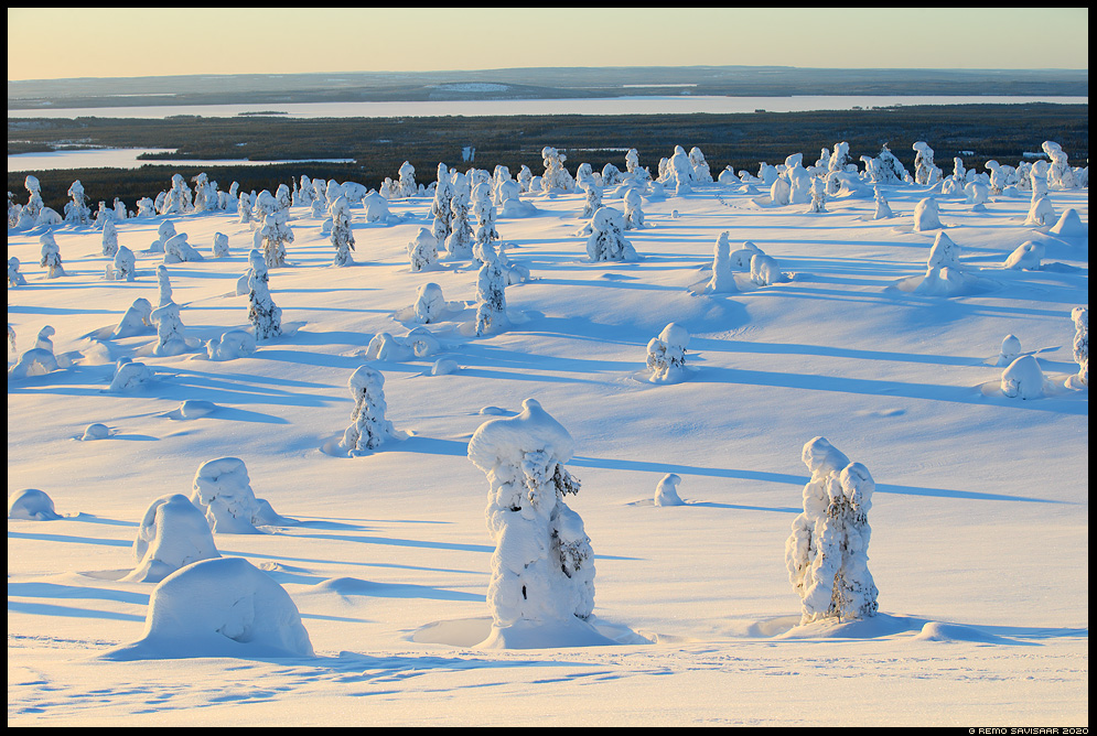Lapimaa, Lapland riisitunturi soome finland Remo Savisaar nature wildlife photography photo blog loodusfotod loodusfoto looduspilt looduspildid