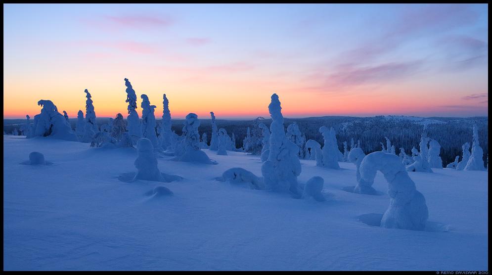 Lapimaa, Lapland riisitunturi soome finland nature wildlife photography photo blog loodusfotod loodusfoto looduspilt looduspildid landscape nature wild wildlife nordic