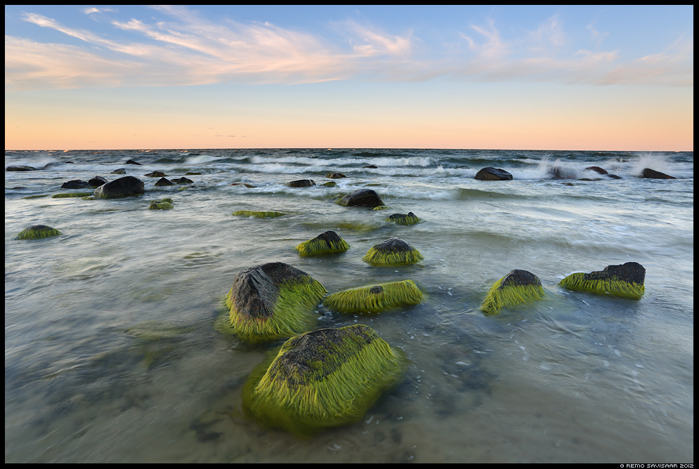 Vetevanad, Green Rocks, meri, läänemeri, sea, tormine stormy Remo Savisaar Eesti loodus Estonian Estonia Baltic nature wildlife photography photo blog loodusfotod loodusfoto looduspilt looduspildid