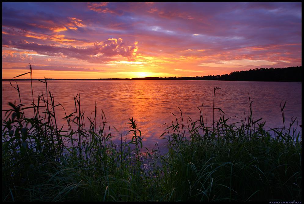 Värvikas loojang, Colorful sunset, Õhtu järvel, Evening at the lake , kevad, spring, päikeseloojang, sunset, järv, sünge, värvidemäng