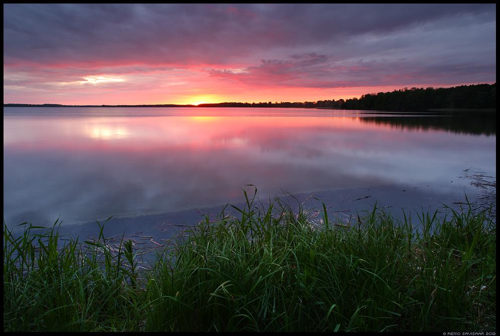 Õhtu järvel, Evening at the lake , kevad, spring, päikeseloojang, sunset, järv, sünge, värvidemäng