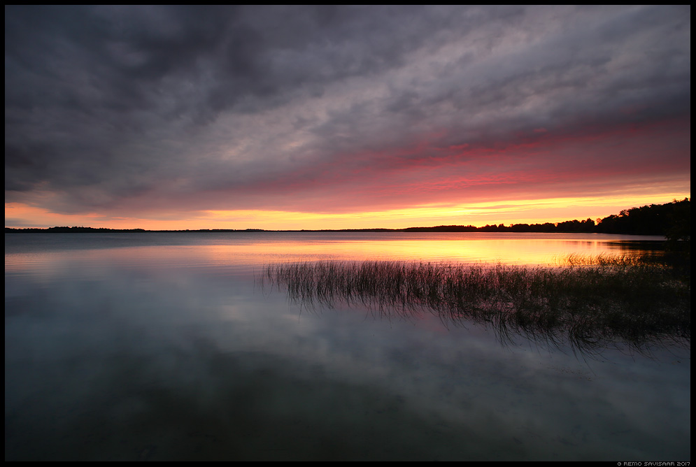 Vaikne õhtu, A Quiet Evening vooremaa Remo Savisaar Eesti loodus Estonian Estonia Baltic nature wildlife photography photo blog loodusfotod loodusfoto looduspilt looduspildid landscape nature wild wildlife nordic