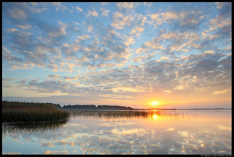 Ilus õhtu, Beautiful evening, järv, Saadjärv, loojang, sunset, kühmnokk-luik