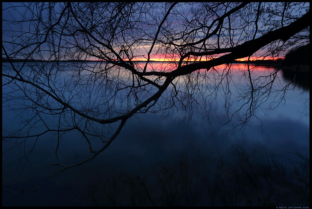 Ehatunnil, After sunset sinine tund saadjärv Remo Savisaar Eesti loodus  Estonian Estonia Baltic nature wildlife photography photo blog loodusfotod loodusfoto looduspilt looduspildid