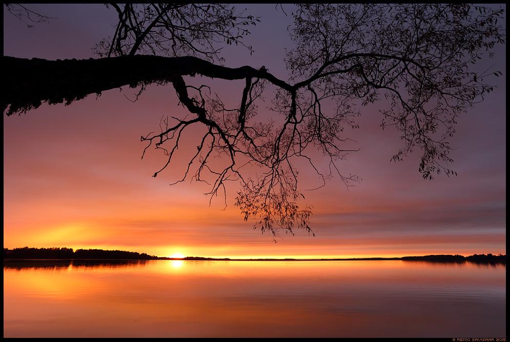 Värvikas loojang, Colorful sunset  saadjärv vooremaa lake Remo Savisaar Eesti loodus  Estonian Estonia Baltic nature wildlife photography photo blog loodusfotod loodusfoto looduspilt looduspildid
