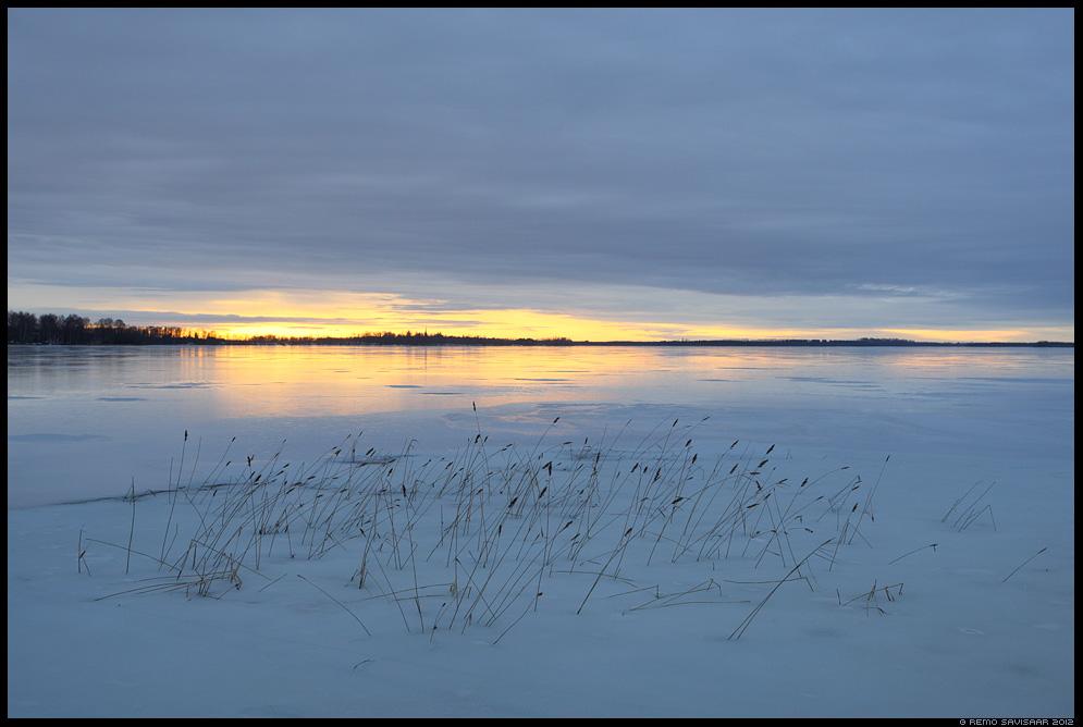 Märts, March, jää, ice, järv, lake, Saadjärv, Tartumaa, sunset, päikeseloojang