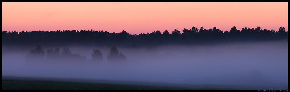 Suveõhtu, Summer evening, Õhtuudu, Evening fog, uduviirg, heinamaa, suvi, meeleolu, öö, hämar