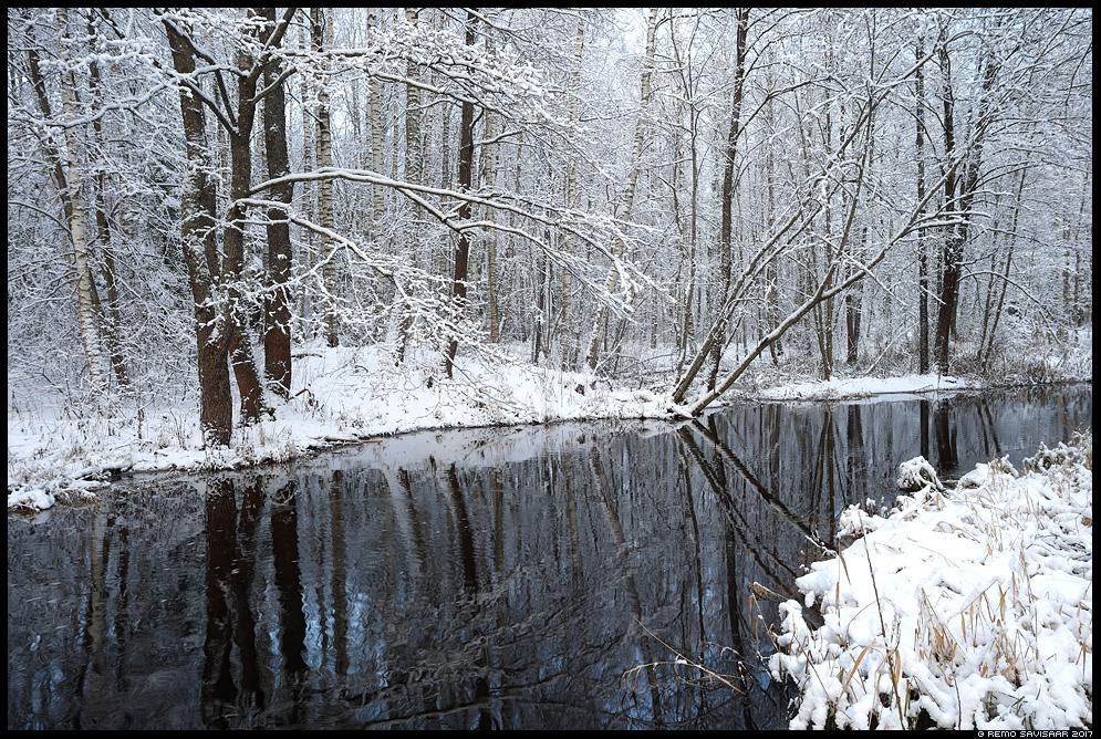 Talve puudutus, A Touch of Winter jõgi river lumine snowy jõgevamaa Remo Savisaar Eesti loodus Estonian Estonia Baltic nature wildlife photography photo blog loodusfotod loodusfoto looduspilt looduspildid