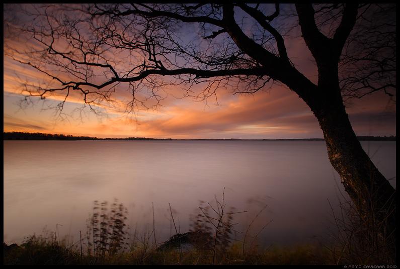 saadjärv, järv, vesi, water, lake, loojang, sunset, õhtu, sügis, autumn, fall