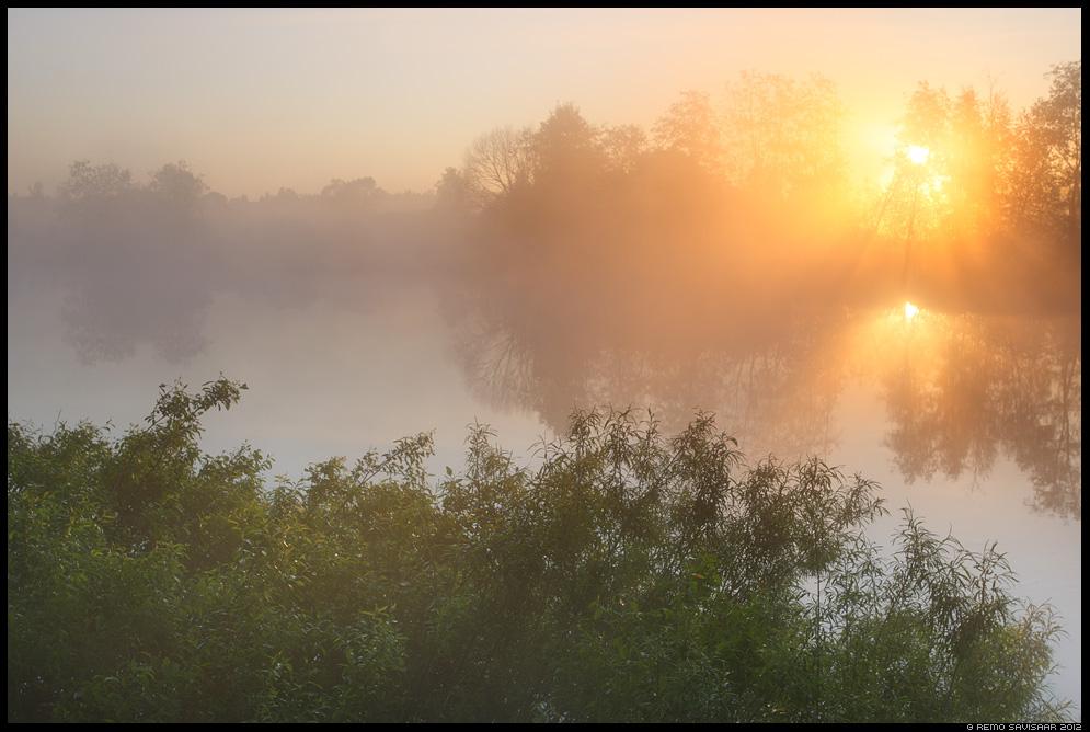 Päeva algus, Beginning of the Day, jõgi, river, emajõgi, Eesti, nature, loodus, udu, udune, fog, foggy