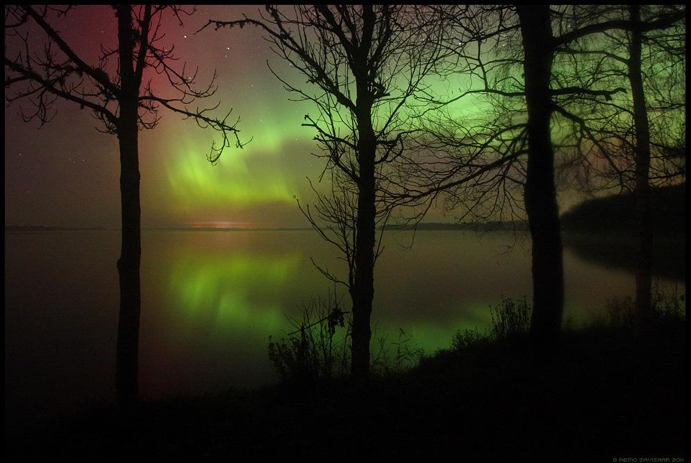öö, Night, Virmalised, Northern Lights, tähistaevas, pime, tähed, meeleolu, värvidemäng, oktoober, october, Aurora Borealis, saadjärv